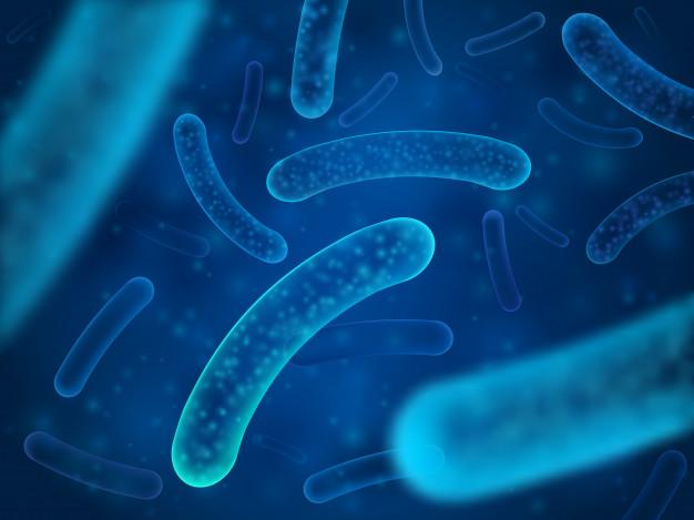Les scientifiques cherchent à identifier des profils taxonomiques (1) et fonctionnels du microbiome intestinal qui caractérisent de manière unique l'obésité et le diabète de type 2.