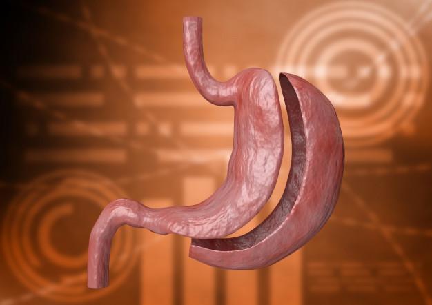 La chirurgie de l'obésité concerne près de 60 000 personnes chaque année en France : sleeve, by-pass, anneau gastrique, on fait le point avec le professeur David Nocca.