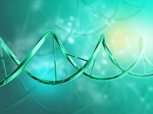 Selon deux études publiées dans la revue Science, 15% des formes graves du Covid-19 s'expliquent par des anomalies génétiques et immunologiques chez les patients. En cause : l'inaction anti-virale des interférons. Ces découvertes pourraient permettre de dépister les personnes qui risquent de développer une forme grave, et mieux les prendre en charge. Considérées comme vulnérables, les personnes souffrant d'obésité pourraient bénéficier de ces recherches.