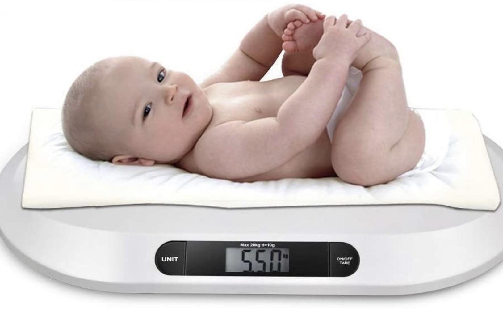 Des chercheurs australiens mettent au point un modèle pour prévenir l'obésité infantile